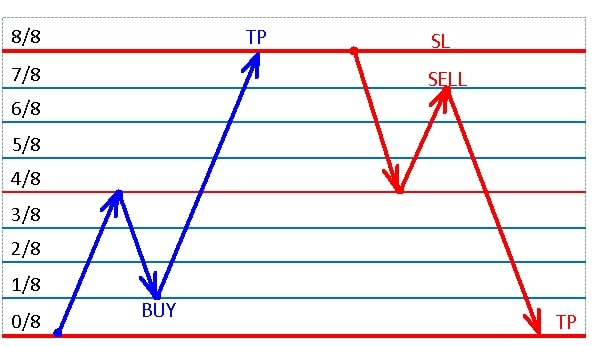 how to trade with murray levels